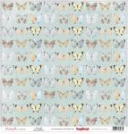Butterflies Collection - Butterfly